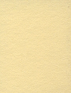 2.72m x 11m Background Paper Champagne 65