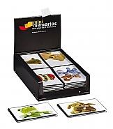 Mini Memories Plush 40ph 10x15 (36)