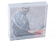 Photo Glitter Globe Square Magnetic front (12pcs)