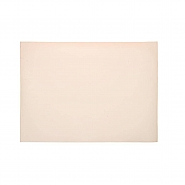 Silicon Heat Pad 550x450x5mm