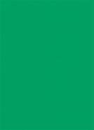 1.35m x 11m Background Paper Chromagreen 54