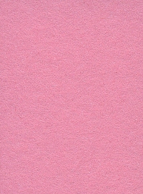 2.72m x 11m Background Paper Carnation 17