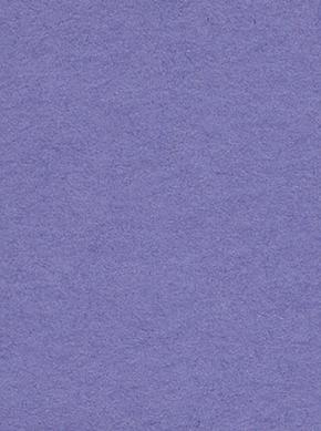 2.72m x 11m Background Paper Crocus 29