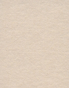 2.72m x 11m Background Paper Oyster 33